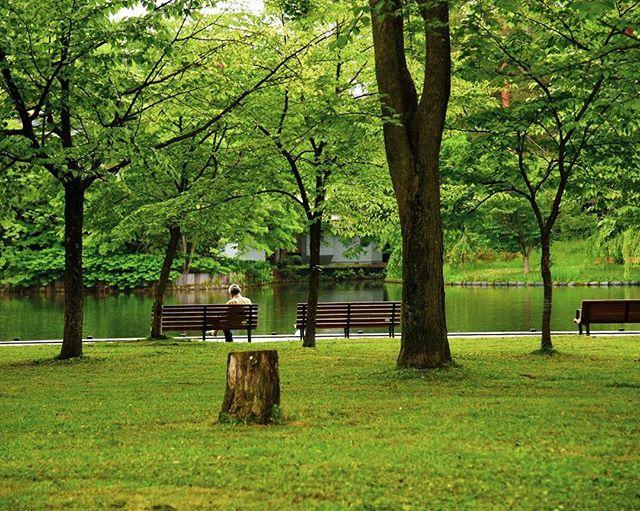 北海道旭川市 常磐公園 asahikawa-shi,hokkaido,japan 道北